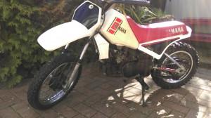 IMAG0440